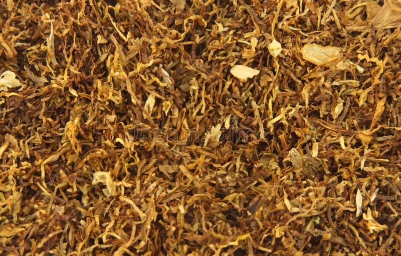 Tabac de cigarette de menthol images libres de droits