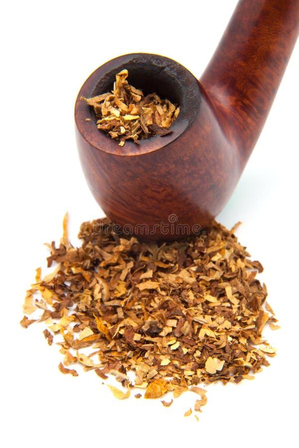 Tabacco-tubo immagine stock libera da diritti
