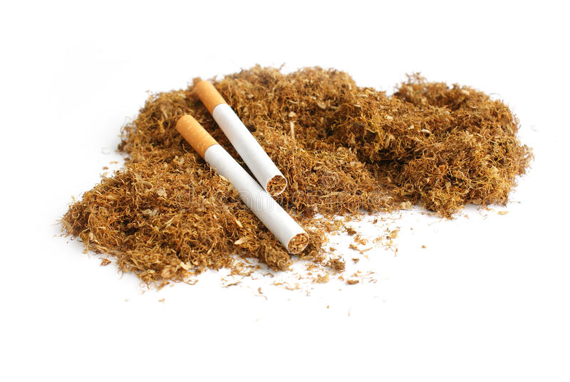 Tabaco imagem de stock royalty free