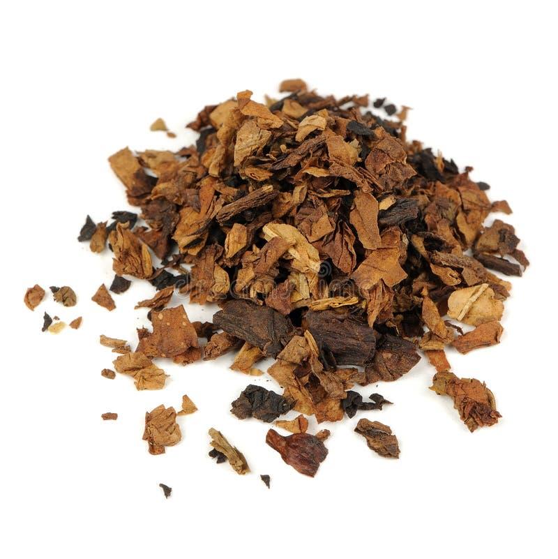 Tabaco isolado no fundo branco fotos de stock royalty free