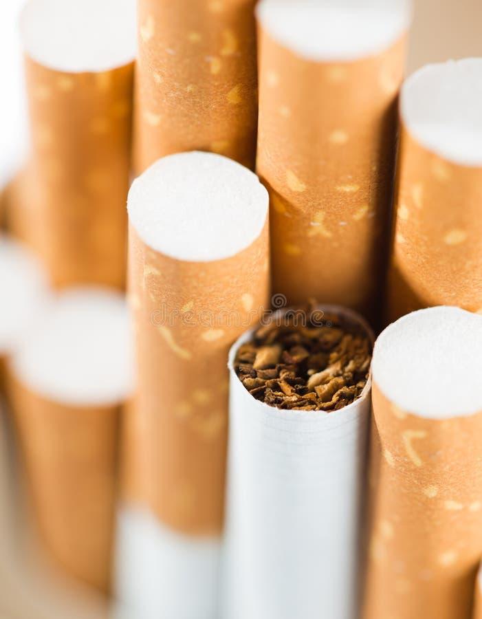 Tabaco nos cigarros fotos de stock royalty free