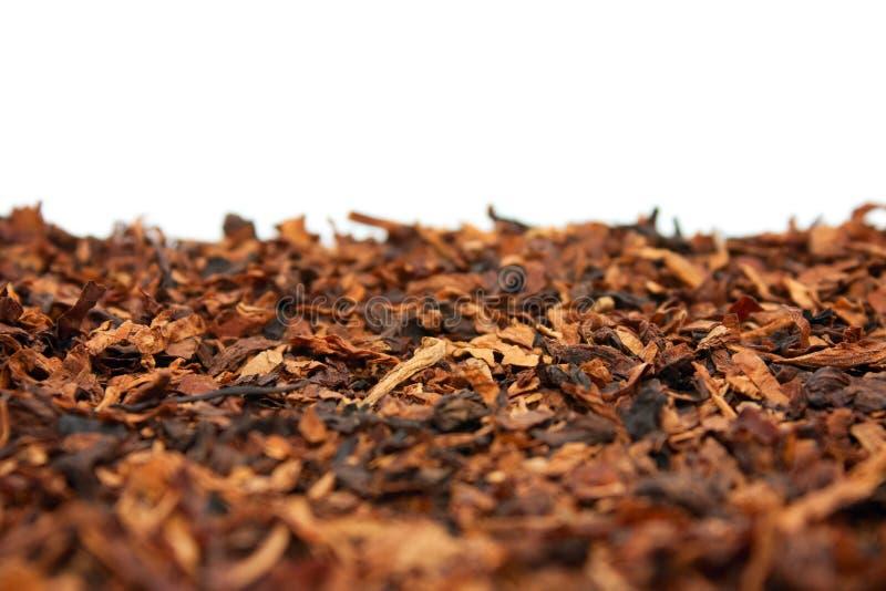 Tabaco seco imagens de stock royalty free