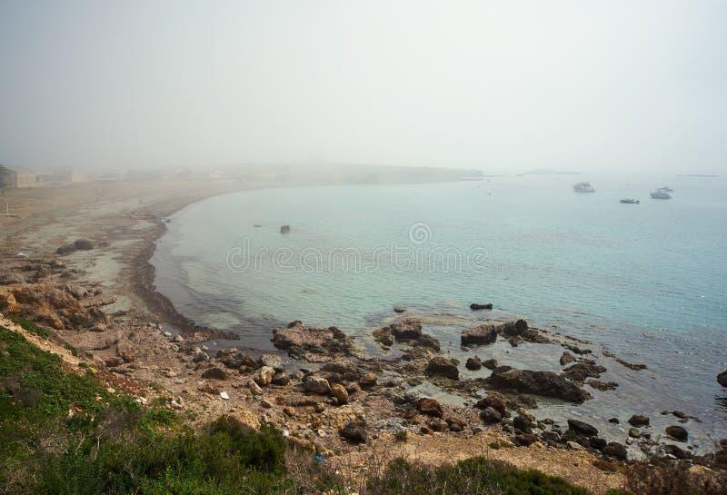 Tabarca海岛岩石海岸线  西班牙 库存图片