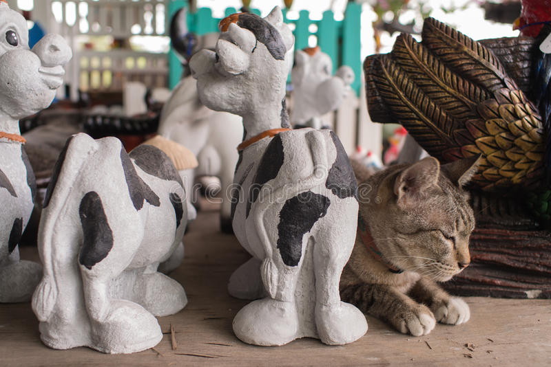 Tabby Cat Mixed mit Puppen stockfotos