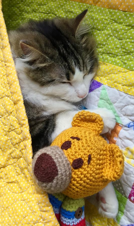 Ravelry: Ginger Cat pattern by Amigurumi Today | 900x534