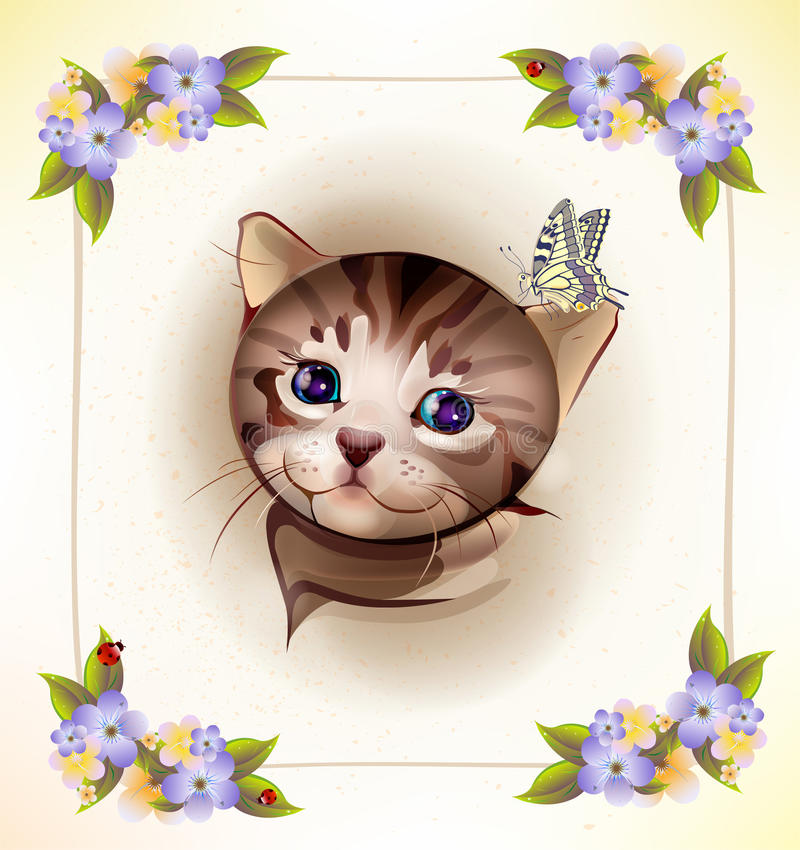 Tabby kitten and butterfly. Birthday card with little tabby kitten and butterfly stock illustration