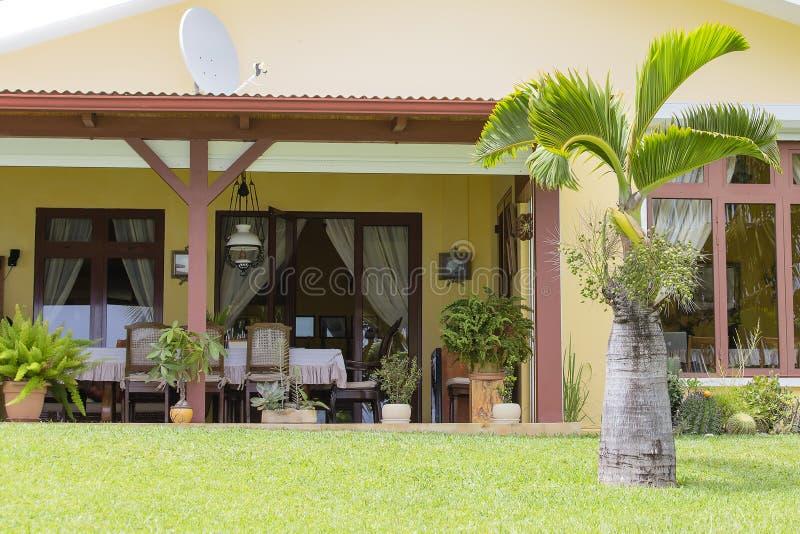 A tabela, as cadeiras e a palmeira no verão jardinam no dia ensolarado Projeto exterior adorável Silêncio, conforto, calma, féria imagem de stock