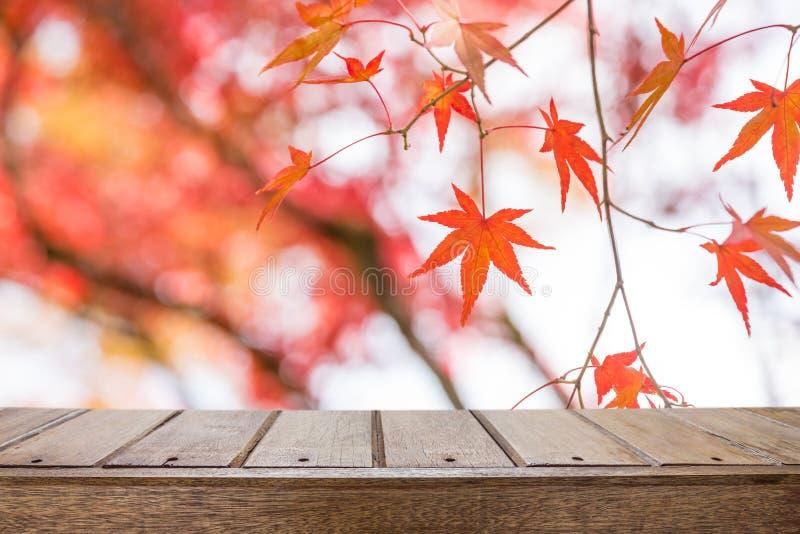 Tabela de madeira com as folhas de bordo vermelhas no parque do outono imagem de stock