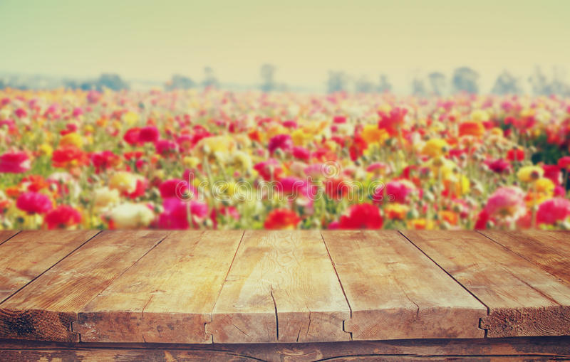 Tabela de madeira da placa na frente da paisagem do verão da flor do campo de flor fotografia de stock