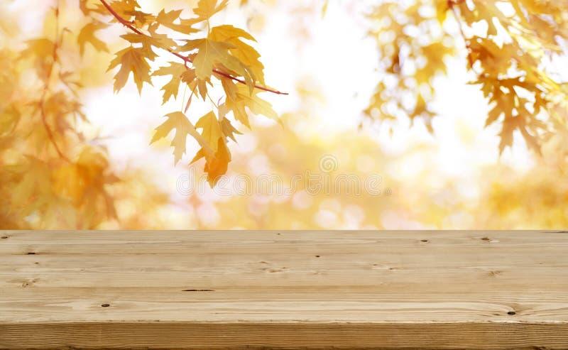 A tabela de madeira na frente do sumário borrou o fundo colorido do outono fotografia de stock
