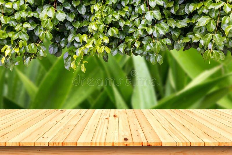 Tabela de madeira no jardim, para a colocação do produto fotografia de stock royalty free