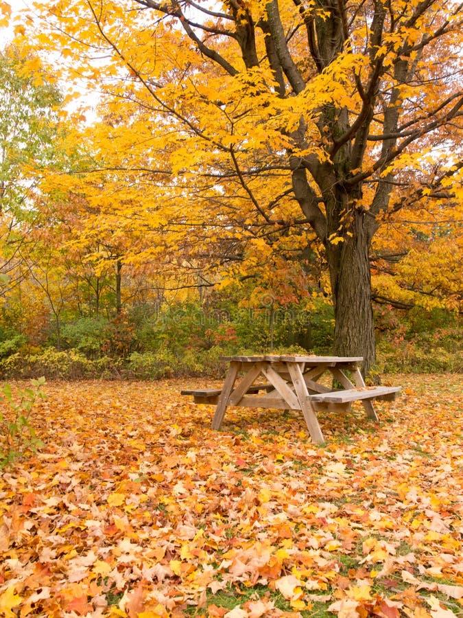 Tabela De Piquenique Do Outono No Parque Imagem de Stock Royalty Free