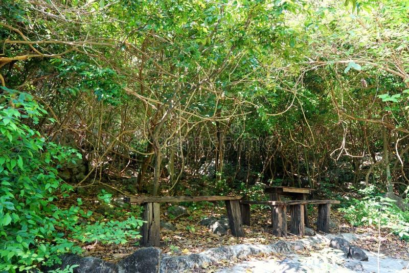 Tabela e cadeiras de madeira da mobília na floresta em Khao Nang Phanthurat Forest Park em Cha am, Tailândia fotografia de stock royalty free