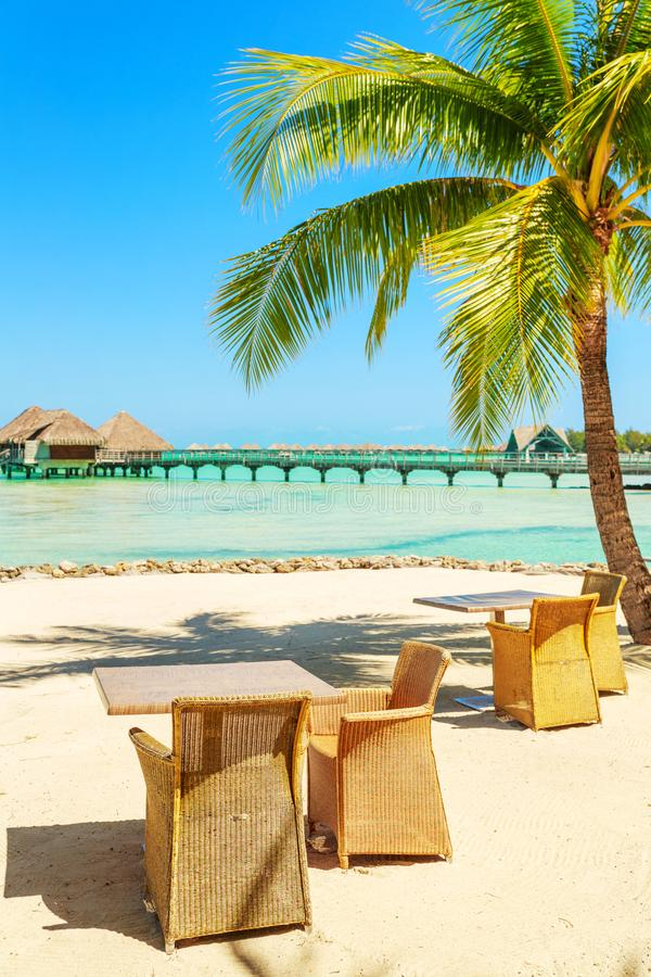Tabela e cadeiras sob a palmeira tropical no Sandy Beach branco, imagem de stock