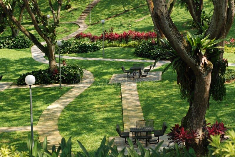 tabela roślin krzesło zdjęcie stock