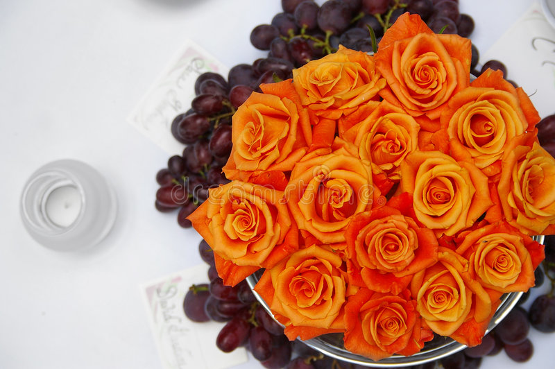 tabela rose zdjęcie royalty free