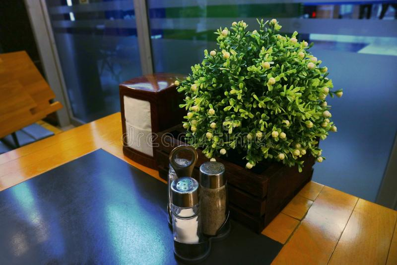 Tabella con un insieme dei tovaglioli e delle spezie sale e pepe accanto alla pianta fotografia stock libera da diritti