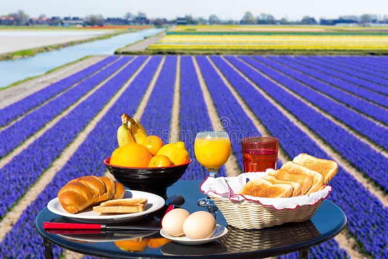 Tabelle mit Lebensmittel und Getränk nahe Blumenfeld stockfotografie
