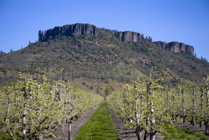 Tabellen-Felsen - zentraler Punkt, Oregon stockfotos
