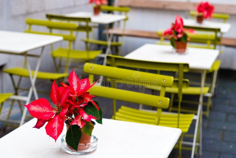 Tabellen, Stühle und Blumen Cafeteria an der im Freien lizenzfreie stockfotografie