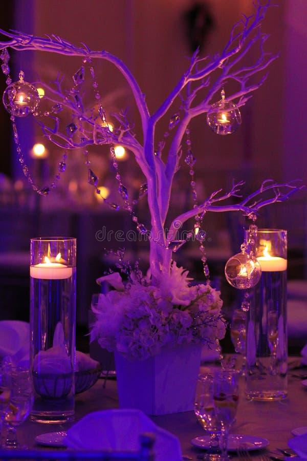 Tabellgarnering för ett vinterbröllop royaltyfria bilder