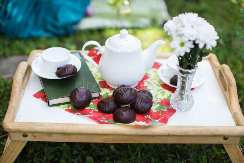 Tabelluppsättningen för eftermiddagte i en sommarträdgård - vit te-saker, bok, marshmallower, blommor i en vas arkivbild