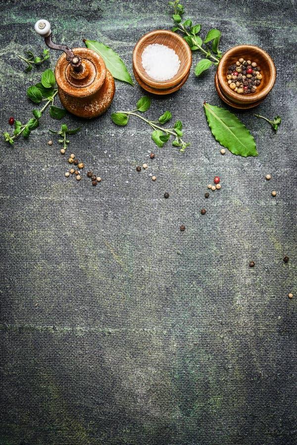 Tabelluppsättningkryddor, saltar, och peppar maler på lantlig bakgrund, bästa sikt arkivbild