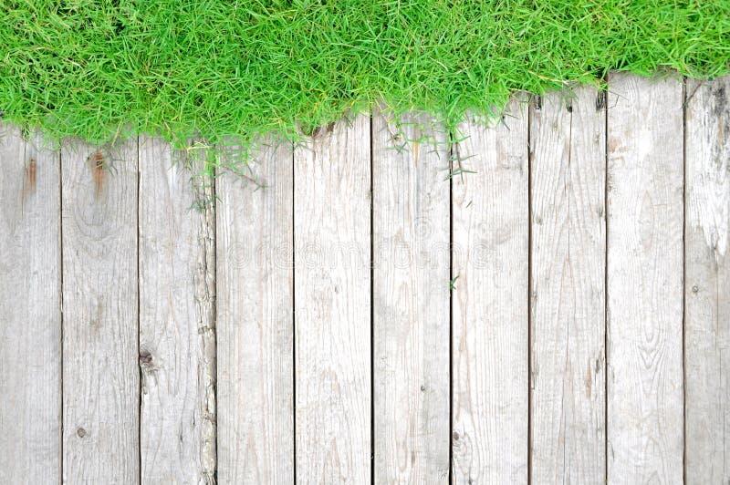 Tablón de la hierba verde y de madera - fondo natural imagen de archivo