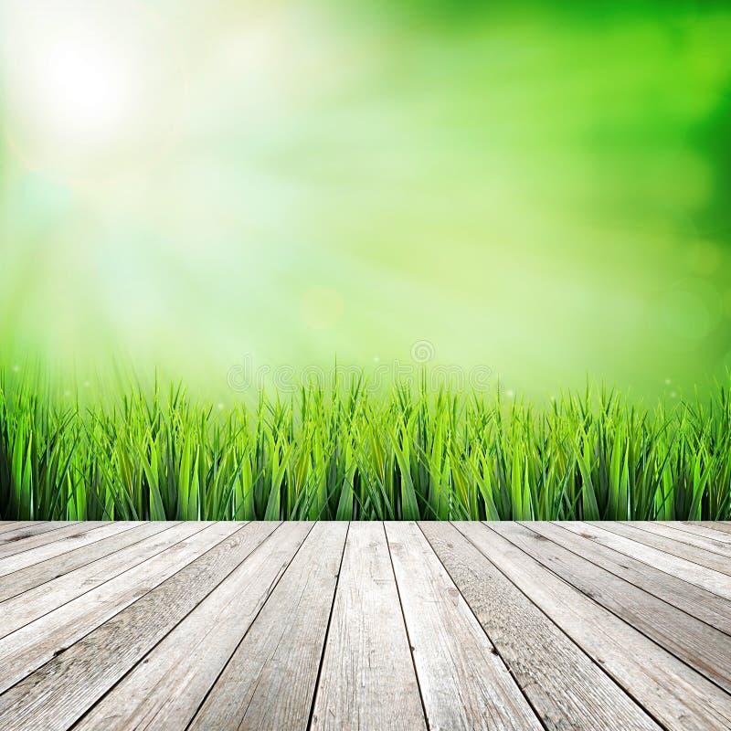 Tablón de madera en fondo abstracto natural verde fotografía de archivo libre de regalías
