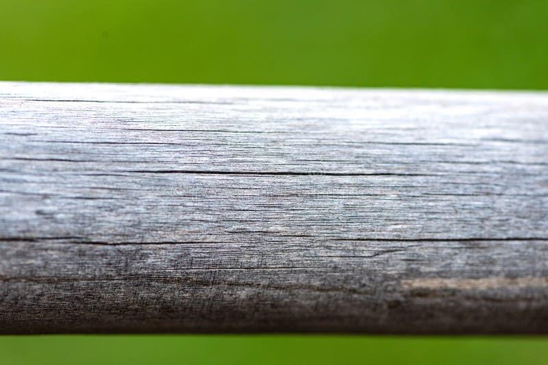 Tablón de madera vacío con la luz del bokeh del fondo de la naturaleza del verde del parque de la falta de definición Primavera y fotos de archivo libres de regalías