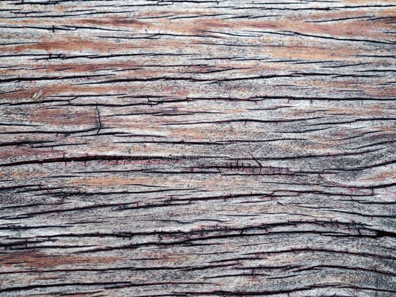 Tablón resistido viejo de la madera con la grieta profunda visible imagen de archivo
