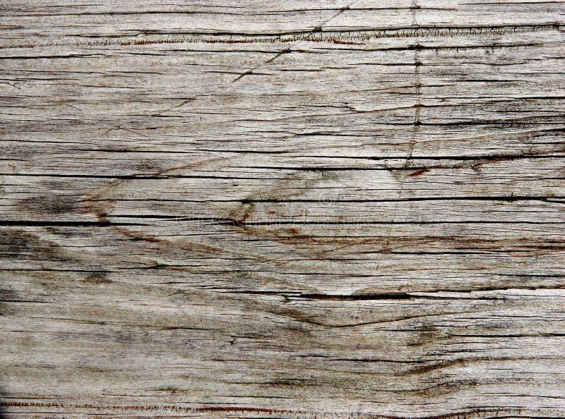 Tablón viejo de la secoya fotografía de archivo