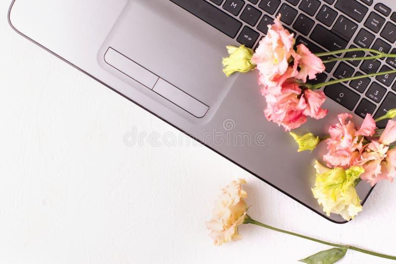 Tabla blanca con el ordenador port?til y las flores Espacio de trabajo del Freelancer imágenes de archivo libres de regalías