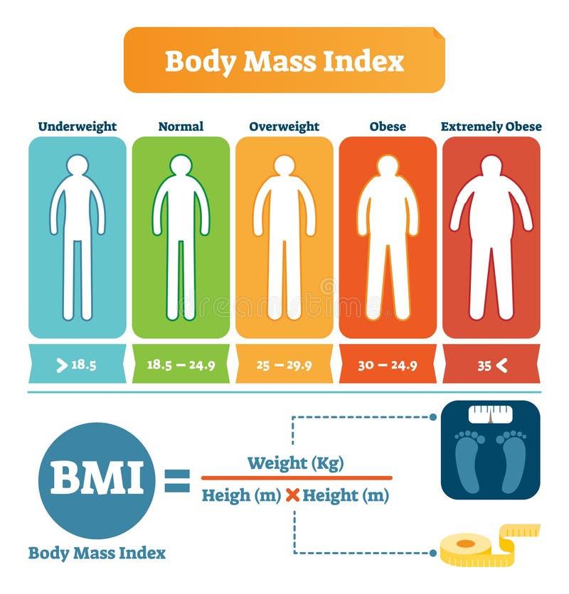 Tabla de índice de masa corporal con ejemplo de la fórmula de BMI Cartel informativo de la atención sanitaria y de la aptitud libre illustration