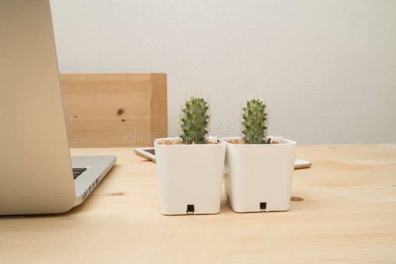 Tabla de la oficina con la flor hermosa del cactus en la maceta blanca y fotos de archivo