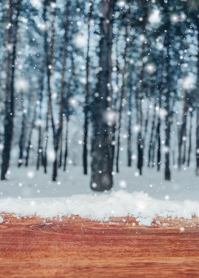 Tabla de madera con el lugar de la nieve y fondo de la Navidad con los abetos y fondo borroso del invierno fotografía de archivo