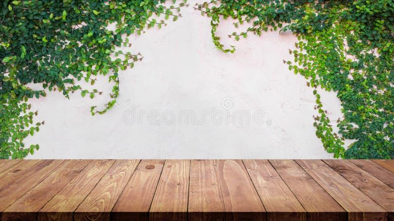 Tabla de madera vacía con las hojas de la hiedra en fondo de la pared del cemento imagen de archivo