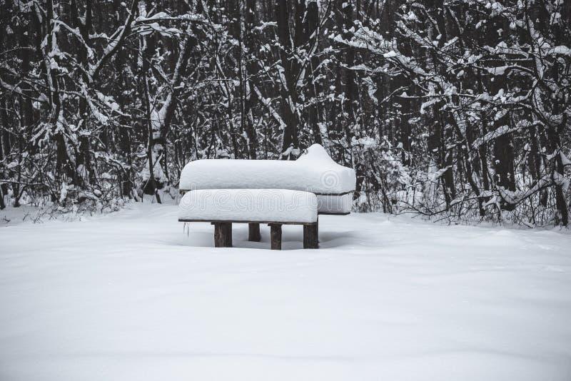 Tabla de madera y banco cubiertos con nieve en el parque en invierno imagen de archivo