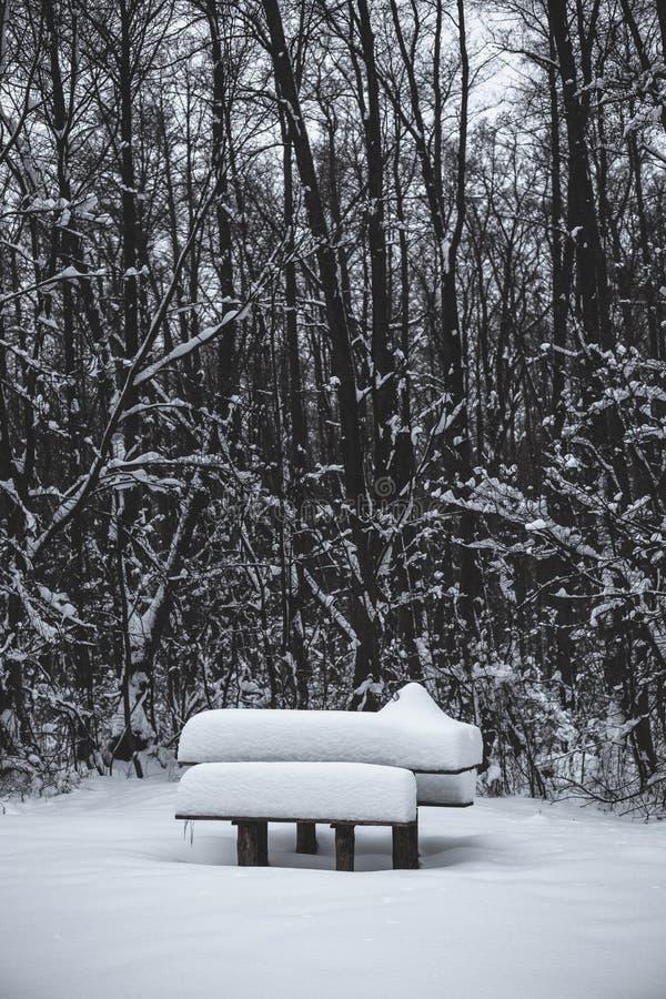 Tabla De Madera Y Banco Cubiertos Con Nieve En El Parque En Invierno ...