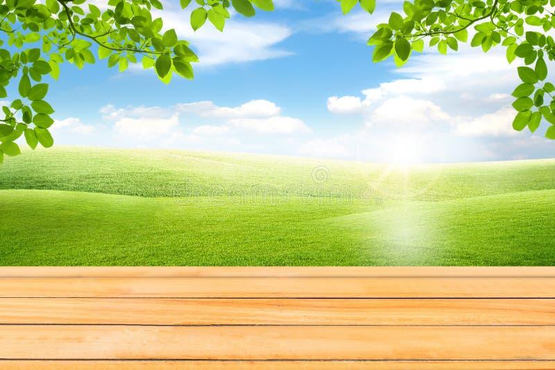 Tabla de madera y hojas verdes con la opinión hermosa del paisaje foto de archivo