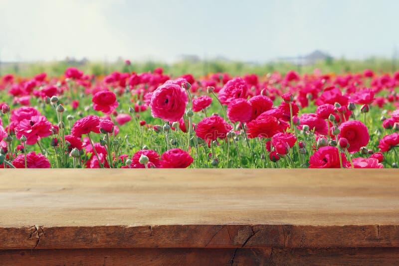 tabla del tablero de madera delante del campo de flores del verano imagen de archivo libre de regalías
