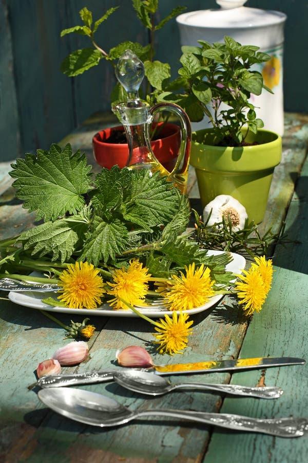 Tabla herbaria hermosa, elegante fotografía de archivo