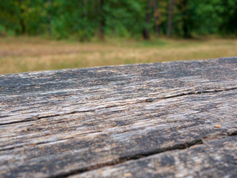 Tabla rústica vacía delante del fondo del campo Espacio vacío de la sobremesa verde de madera del bosque delante de árboles en pa imagenes de archivo