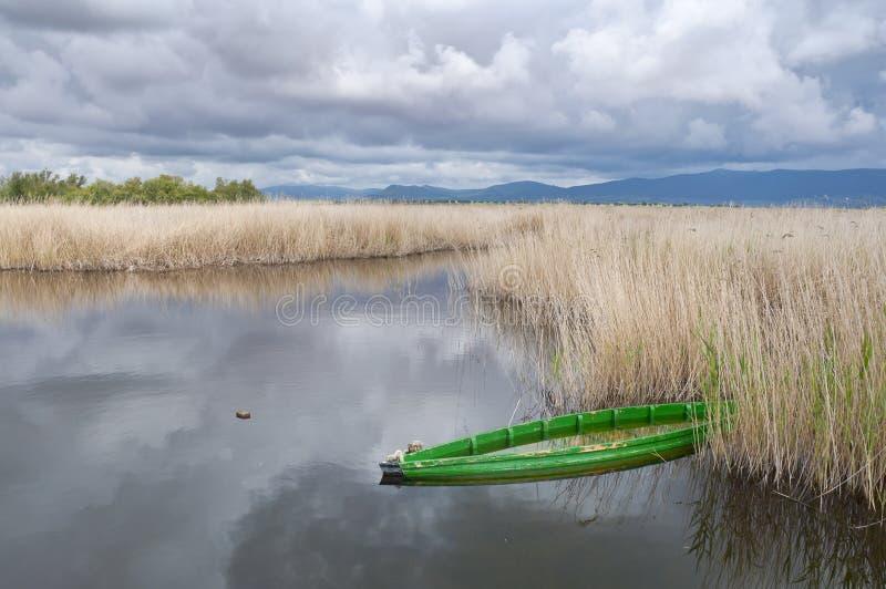 Tablas de Daimiel National Park, Spain stock images