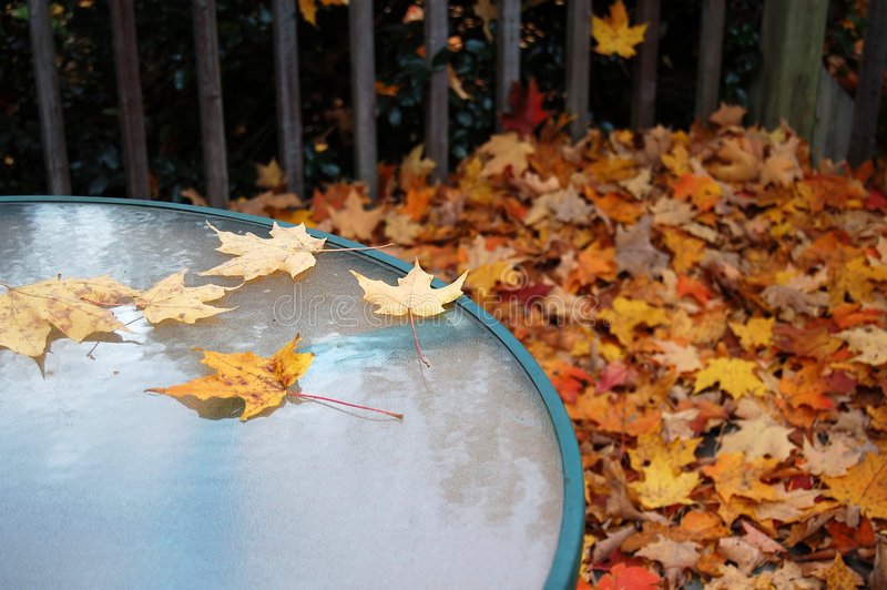 Table in Autumn royalty free stock photography