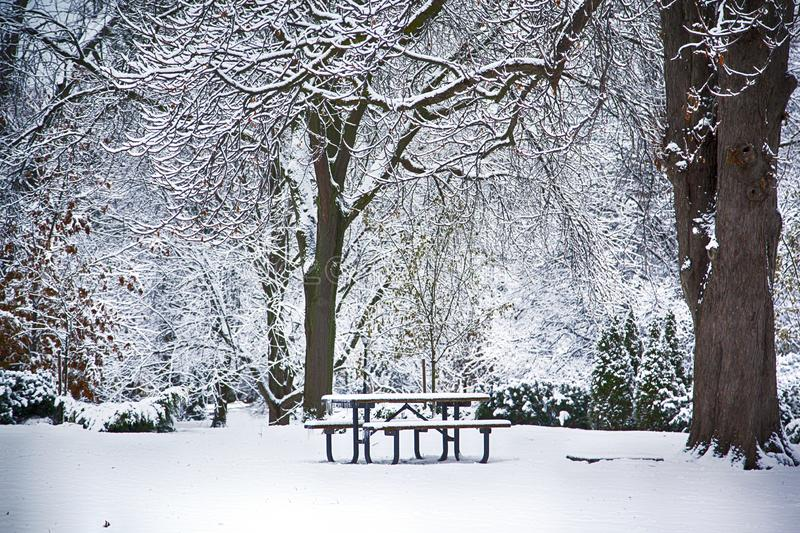 Table and bench under snow in park at winter time. Winter landscape royalty free stock photo