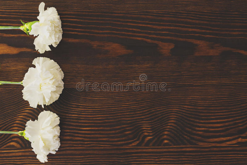 Table with cloves stock photo