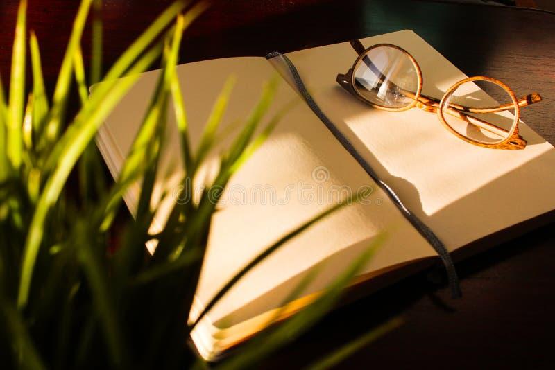Table de bureau de vue sup?rieure, table avec un carnet ouvert, un album, verres, une plante verte Couleurs satur?es lumineuses s photos stock