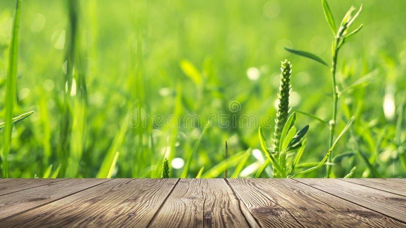 Table de fond de ressort Fond lavé vert de bokeh image libre de droits