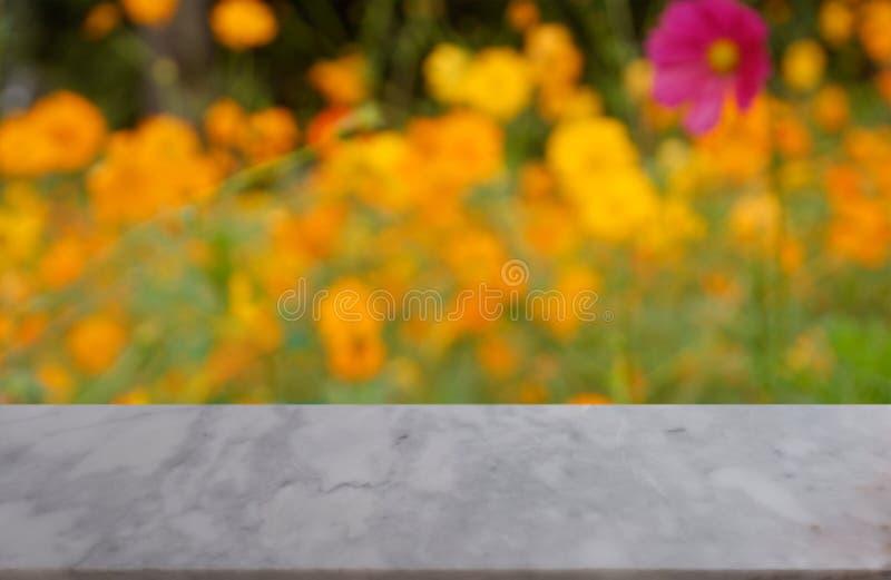 Table de marbre blanche vide au-dessus de fond brouillé de beau cosmos jaune se développant dans le jardin, montage d'affichage d images libres de droits